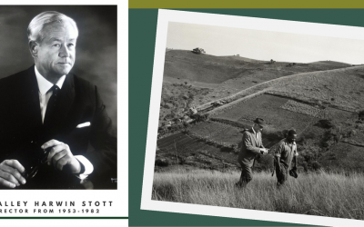 HALLEY STOTT – Founder of The Valley Trust